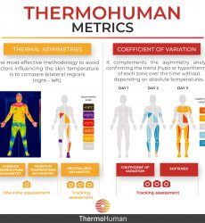 How can I use ThermoHuman metrics?