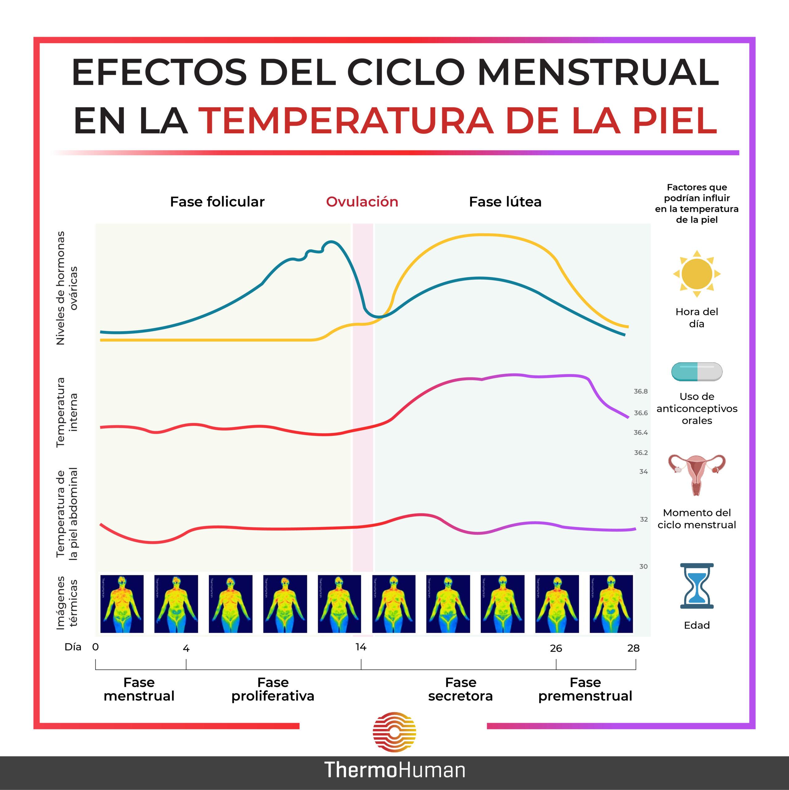 Efectos del ciclo menstrual en la temperatura de la piel