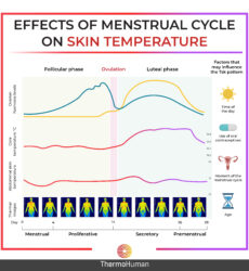 Effects of Menstrual Cycle on Skin Temperature