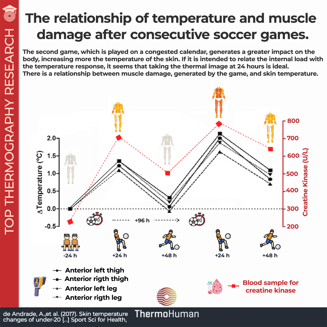 Skin temperature and muscle damage correlation in soccer players